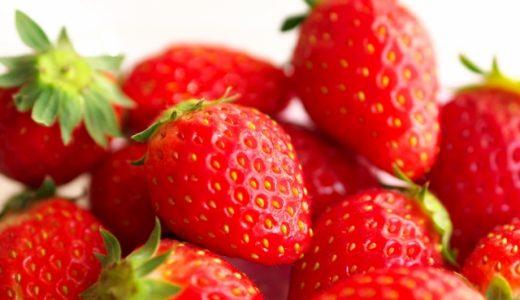 美味しい苺ならここが一番!ふるさと納税いちごブランド別おすすめランキング