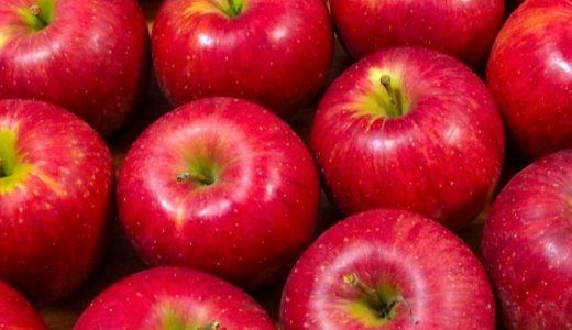 ふるさと納税の絶品りんご大特集!新鮮で甘さも香りも食感全て抜群