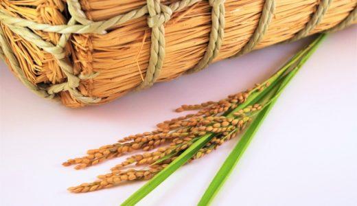【お米はツヤツヤで低農薬が一番】ふるさと納税で10kg/1万円のお米!