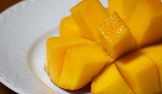 完熟マンゴーが欲しい!ふるさと納税でおすすめマンゴーまとめました